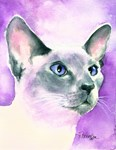 Cat Lovers - Siamese