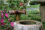 Bamboo Water Basin