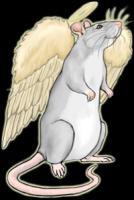 <b>Rat Angel</b>