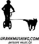 AV Urban Mushing Shirts and More!
