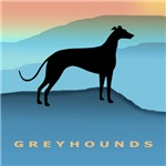 Greyhound Blue Mountains