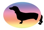 Come & Go Dachshund Dog Rainbow