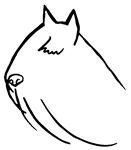 Bouvier Dog Head Sketch