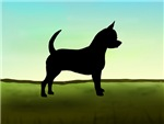 Grassy Field Chihuahua