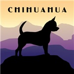 Chihuahua Purple Mountains