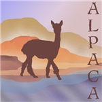 Mountain Mirage Alpaca