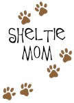 Sheltie - Shetland Sheepdog
