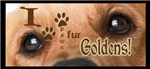 I PAWS [pause] FUR [for] Goldens! Very Punny.