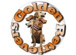 GOLDEN RETRIEVERS CIRCLE COLLAGE