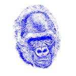 Gorilla T-shirts, Gorillas