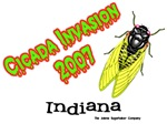 Indiana Cicada Invasion 2007