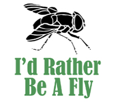 Rather Be A Fly