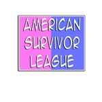 American Survivor League