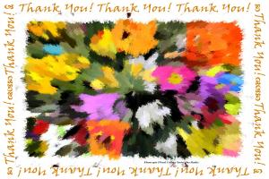 Colorful Thank you Cards by Celeste Sheffey