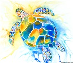More Sea Turtles