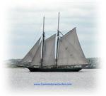 Boats, Tall Ships, Sailing