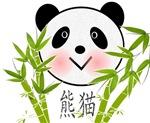 CHINESE PANDA BABY