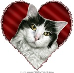 White and Black Cat Valentine