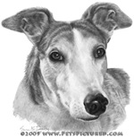 Zoie, Greyhound
