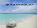 Wheelers Reef Queensland