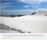 Sand Dunes Dream
