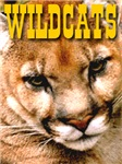Wildcats First Edition