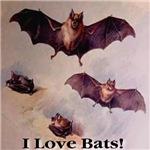 I Love Bats! Digitally Remastered