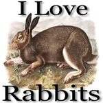 I Love Rabbits