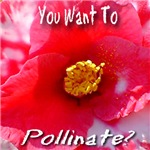You Want To Pollinate?