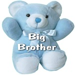 Big Brother Blue Teddy Bear
