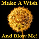 Make A Wish And Blow Me!