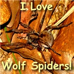 I Love Wolf Spiders