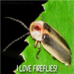 I Love Fireflies 2008 Edition