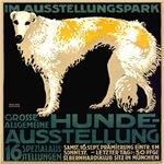 Russian borzoi wolfhound ad 1911