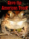 Save The Toad