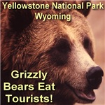 Grizzly Bears Eat Tourists