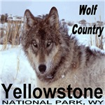 Wolf Country Yellowstone National Park, WY