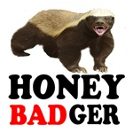 Honey Badger is Bad