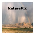 NaturePix CD