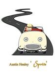 Racing Driver Dream