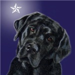 Black Lab Xmas Star