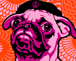 Pug- Drop Bones Not Bombs