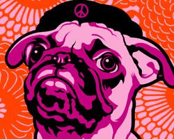 Pug- Drop Bones Not Bombs