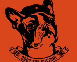 Boston Terrier Icon