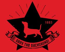 Dachshund Star Icon