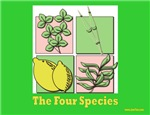 Succos The Four Species