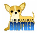 Chihuahua Brother