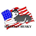 Black Siberian Husky USA