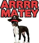 Pirate Boston Terrier