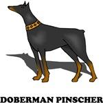 Doberman Pinscher Drawing